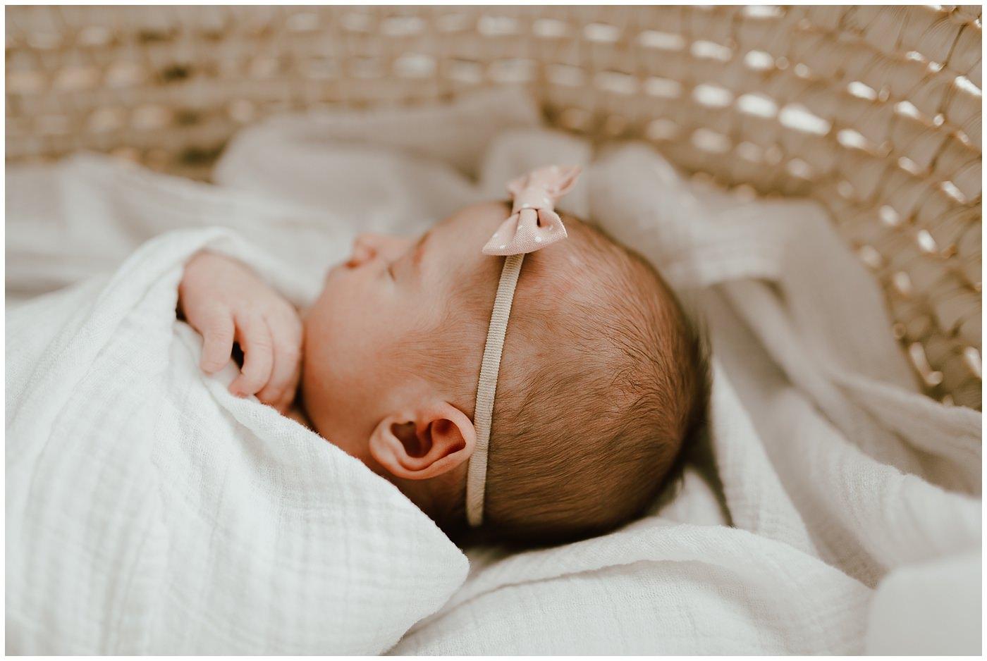Steinbach Newborn Photographer